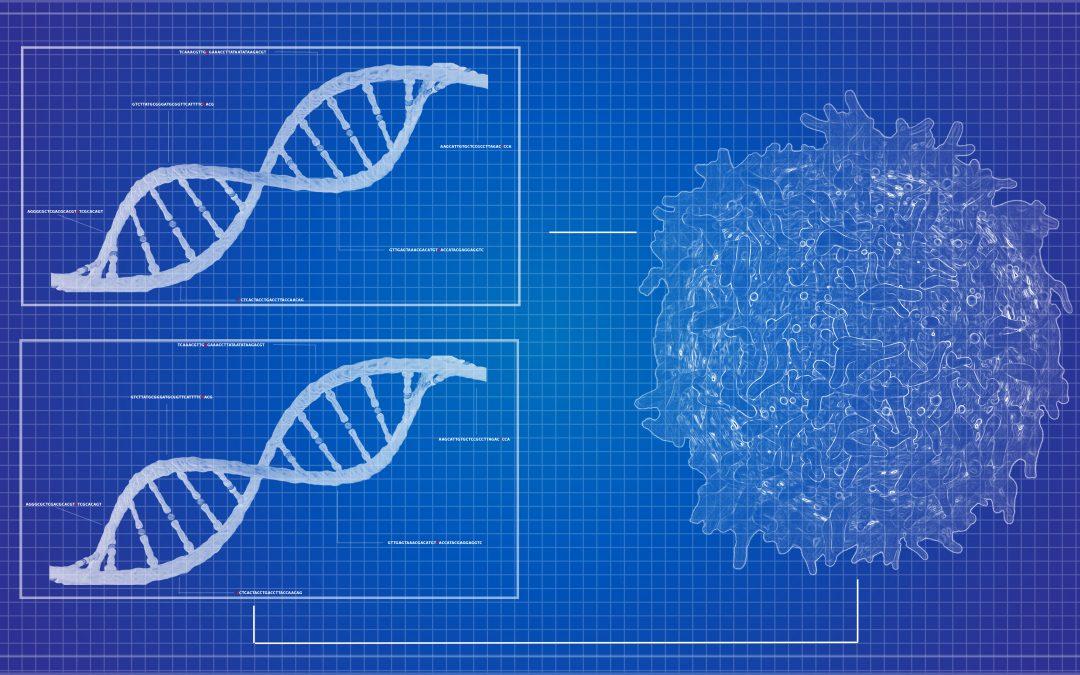 ДНК-вакцина, китайские модифицированные близнецы и перепрограммирование стволовых клеток